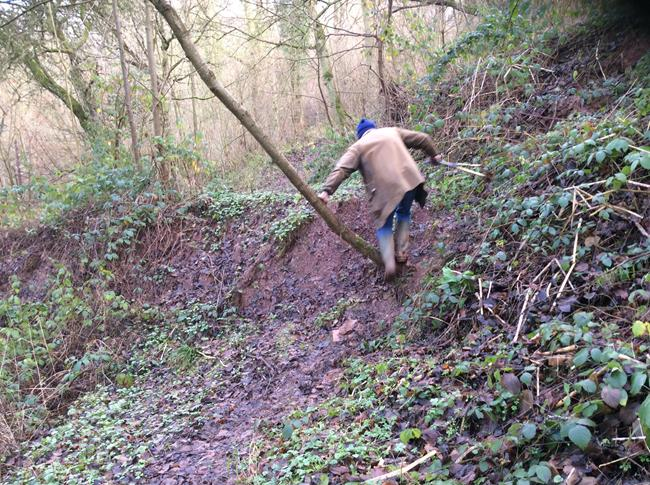 Kingswood path subsidence (3)