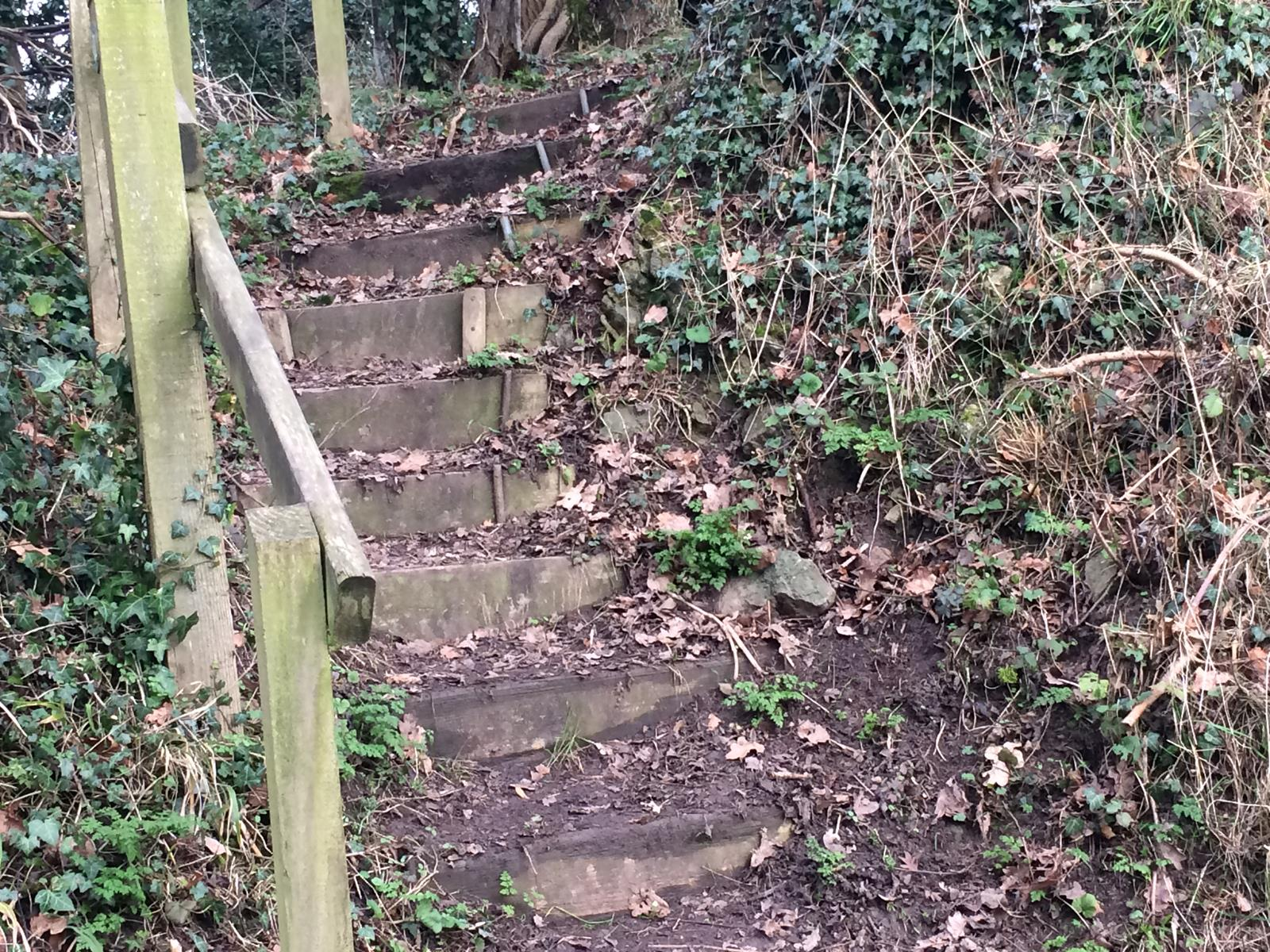 STEPS ON WW BEFORE
