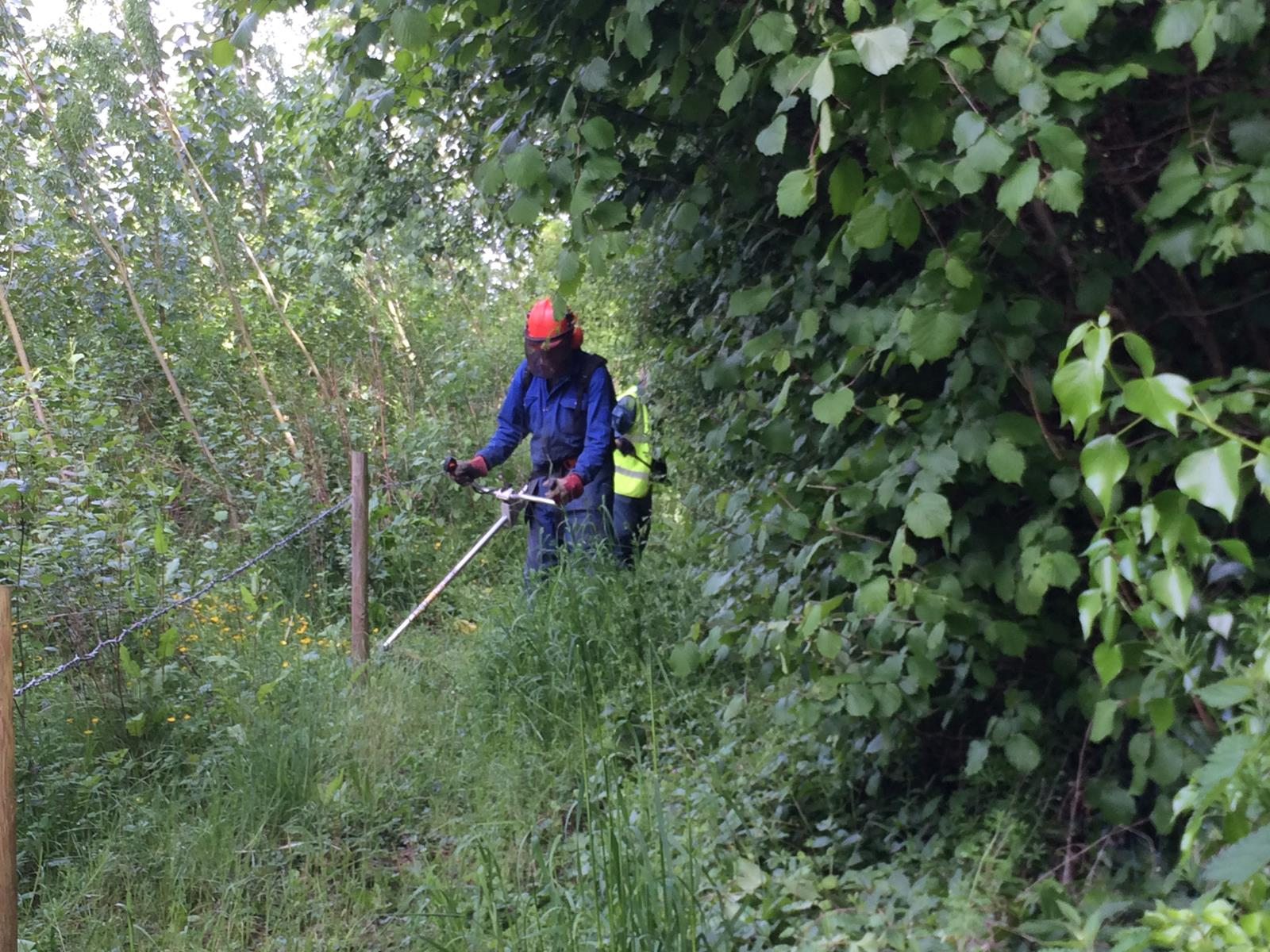 John Corbett brush cutting nr Brook Court